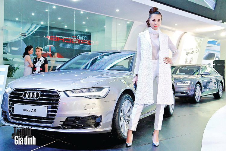 20151110-viet-nam-international-motor-show-2015-audi